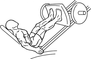 English: an exercise of thigh
