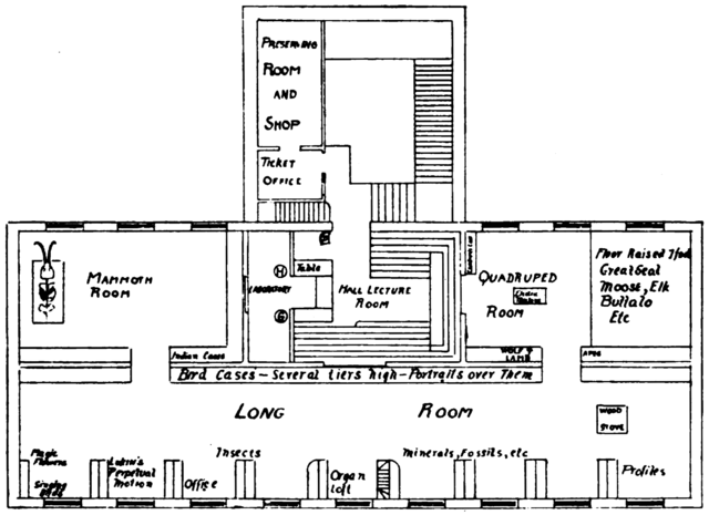 File:PSM V75 D233 Ground plan of peale museum 1821.png