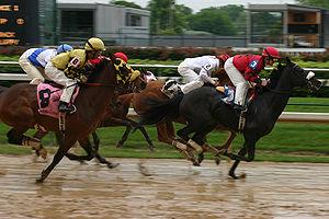 Horse racing, Churchill Downs