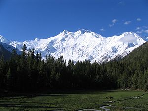 Nanga Parbat, western Himalayas, Pakistan.