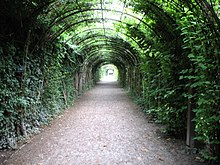 pergolas are more permanent than a green tunnel pictured here trained on modern materials mirabellgarten salzburg