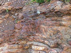 Volterraio ( Elba ). Rocks containing iron. De...