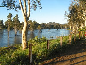 English: Brisbane River downstream from Wivenh...