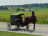Amish via horse and buggy