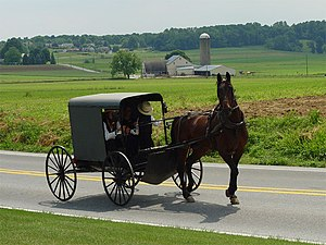 Amish family riding in a traditional Amish bug...