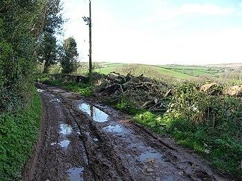 English: Mid Devon : Muddy Countryside Track