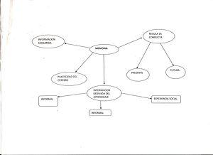 Español: memoria y aprendizaje