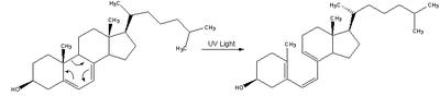 Reaction-Dehydrocholesterol-PrevitaminD3.png