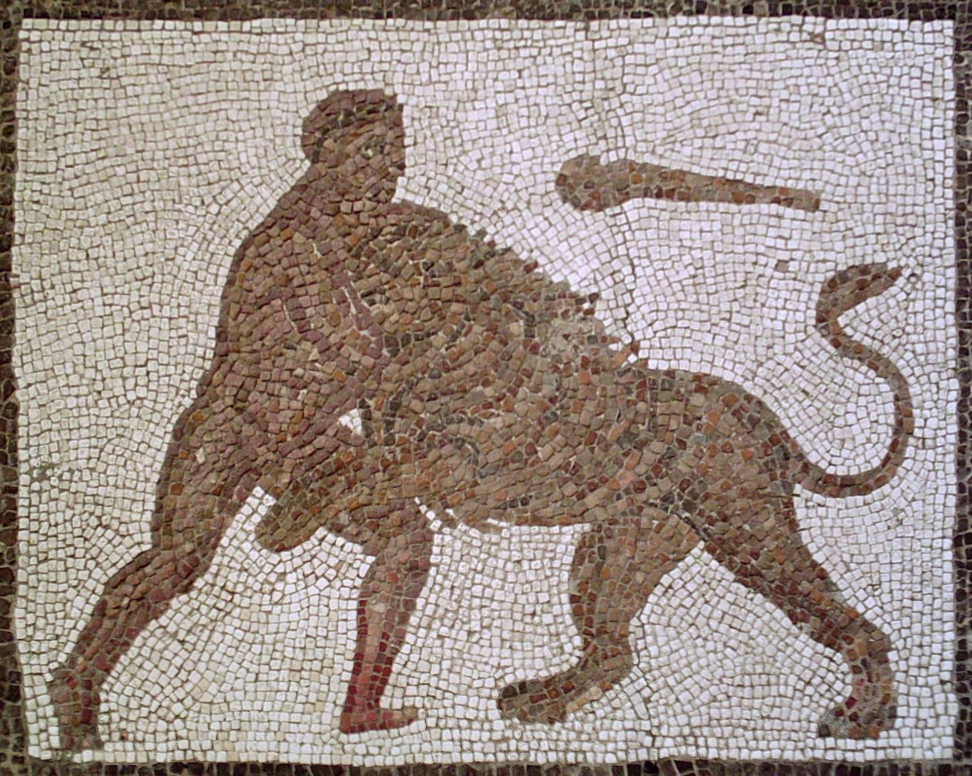 Len de Nemea  Wikipedia la enciclopedia libre