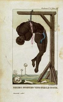 Stedman-hanging