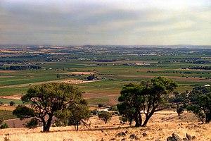 Barossa Valley, South Australia, 1987