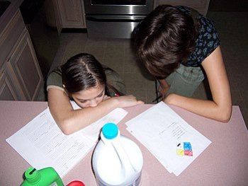 A mother and her homeschooled daughter, studyi...