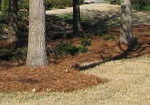 horticulture mulch - wikibooks