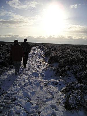 English: Winter sunshine.
