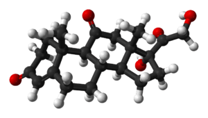 Ball-and-stick model of the cortisone molecule...