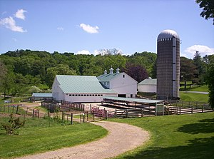 English: A view of The Main Dairy Barn and Pet...