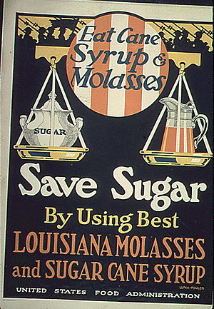 """Eat Cane Syrup and Molasses. Save Sugar ..."