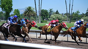 Quarter Horse Racing at the Alameda County Fai...