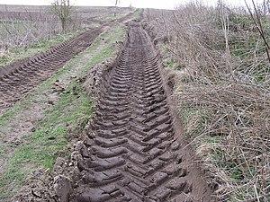 English: In a rut Footpath track near nursery ...