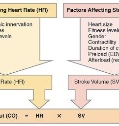 diagram of cardiac output [ 1200 x 703 Pixel ]