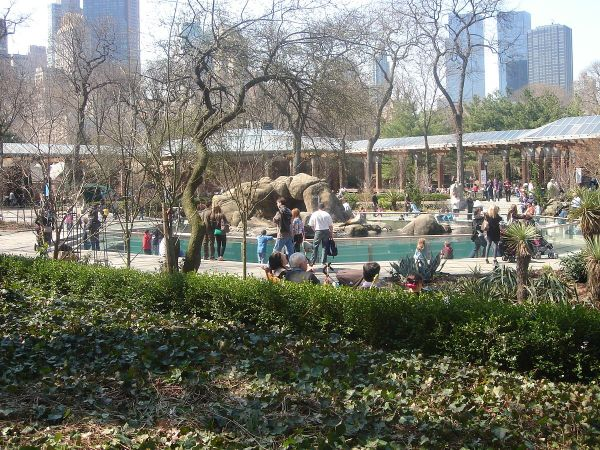 Central Park Zoo - Wikipedia