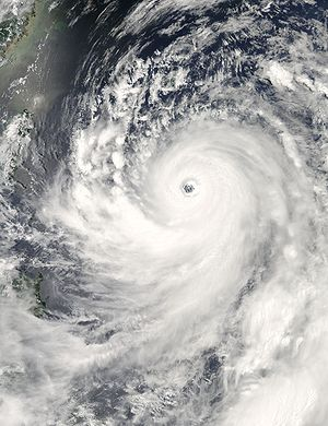 2007 Pacific typhoon season