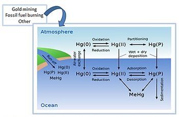 mercury energy level diagram aftermarket keyless entry wiring pollution in the ocean wikipedia