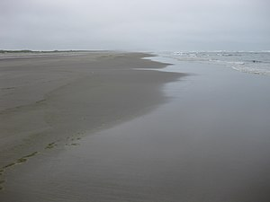The beach at Long Beach Peninsula, WA, and the...
