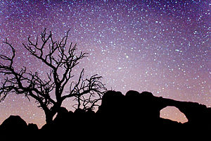 English: Arches National Park by Night.