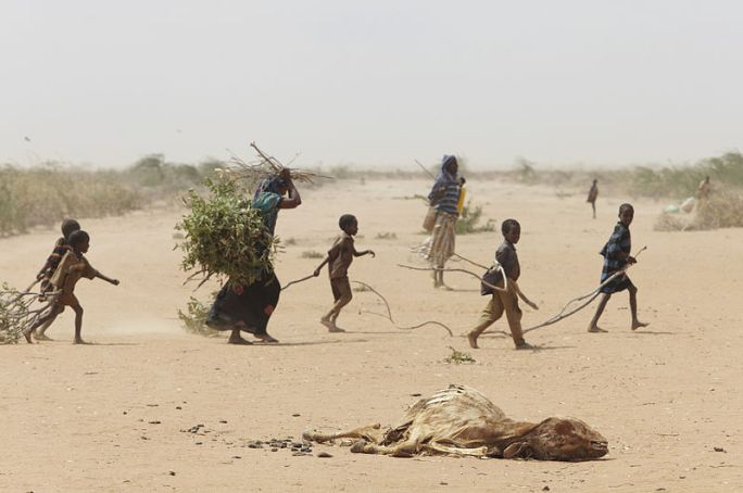 File:Oxfam East Africa - A family gathers sticks and branches for firewood.jpg