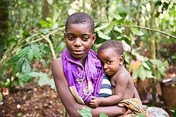 african pygmies wikipedia