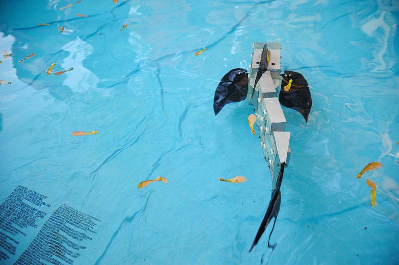 File:Robot Fish (4651519523).jpg