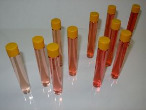 Description : gamme de couleur de vins rosés d...