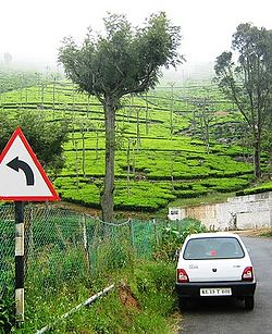 Ooty  Travel guide at Wikivoyage