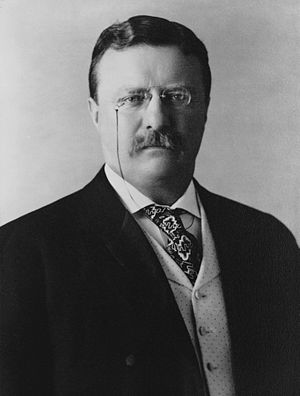 Theodore Roosevelt (1904) English: President o...
