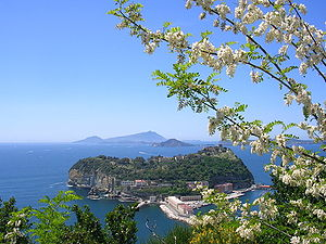The islet of Nisida as viewed from Parco Virgi...
