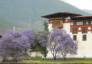 English: Dzong (fort) in Punakha (a place name...