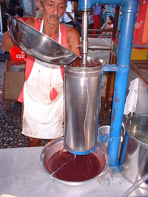 Açaí (palm berry) juice extractor in the stree...