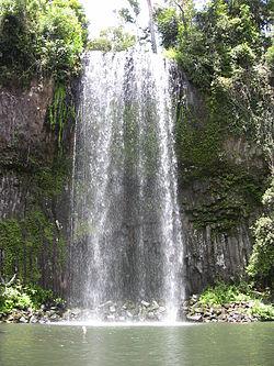 Millaa Millaa Falls  Wikipedia