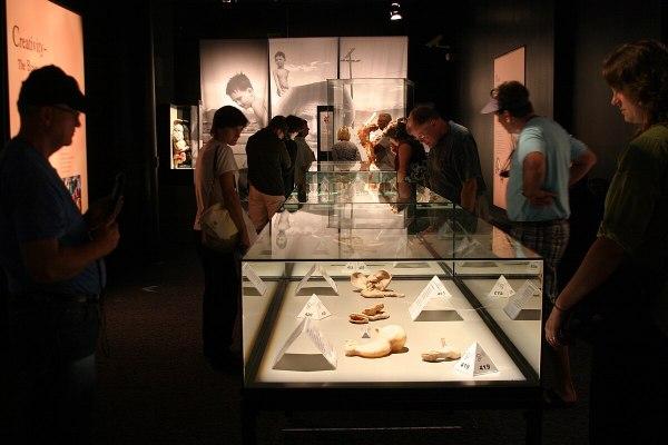 Body World's Exhibit San Diego