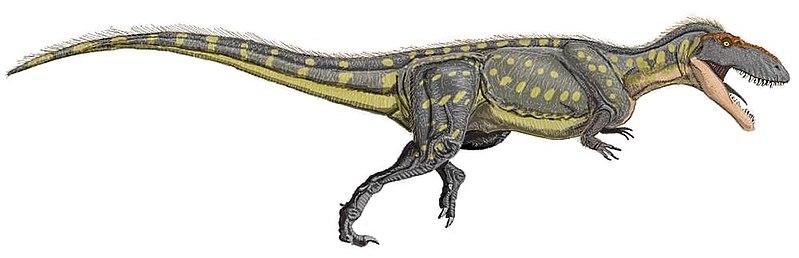 File:Torvosaurus tanner DBi.jpg