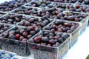Michigan is the leading U.S. producer of tart ...