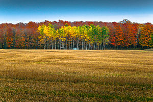 Autumn Landscape of Door County, Wisconsin