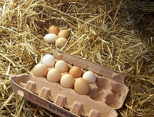 Freerange eggs