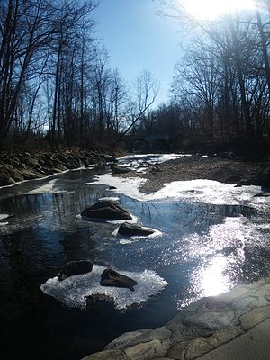 English: Photo of Holmes Run taken from one of...