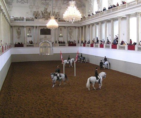 Spanische Hofreitschule3, Vienna