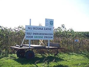 Biofuel testfield.