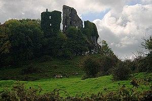 Castles of Munster, Carrigogunnell, Limerick -...