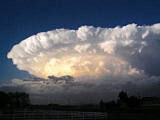 https://i0.wp.com/upload.wikimedia.org/wikipedia/commons/thumb/2/20/Chaparral_Supercell_2.JPG/320px-Chaparral_Supercell_2.JPG