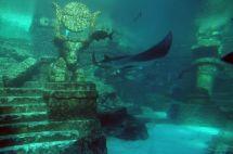 File Lower Level Aquarium Atlantis Hotel